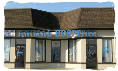 Animal Care Veterinary Hospital